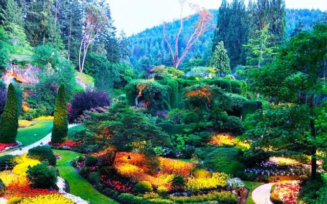 ботанічний сад батумі 1